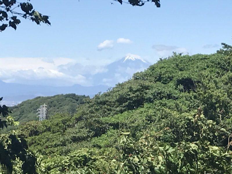 天園からの富士山