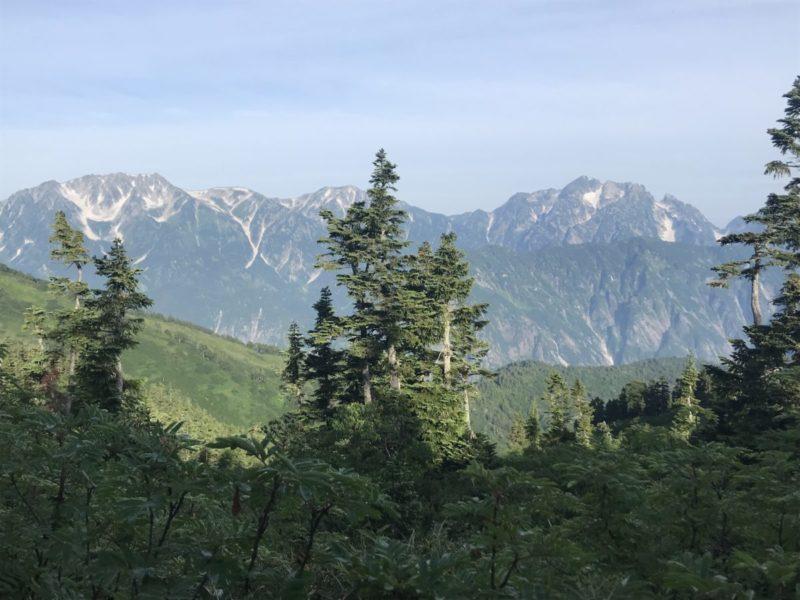 木々の間から剱・立山